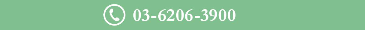 TEL:03-6206-3900