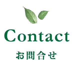 Contact - お問合せ -